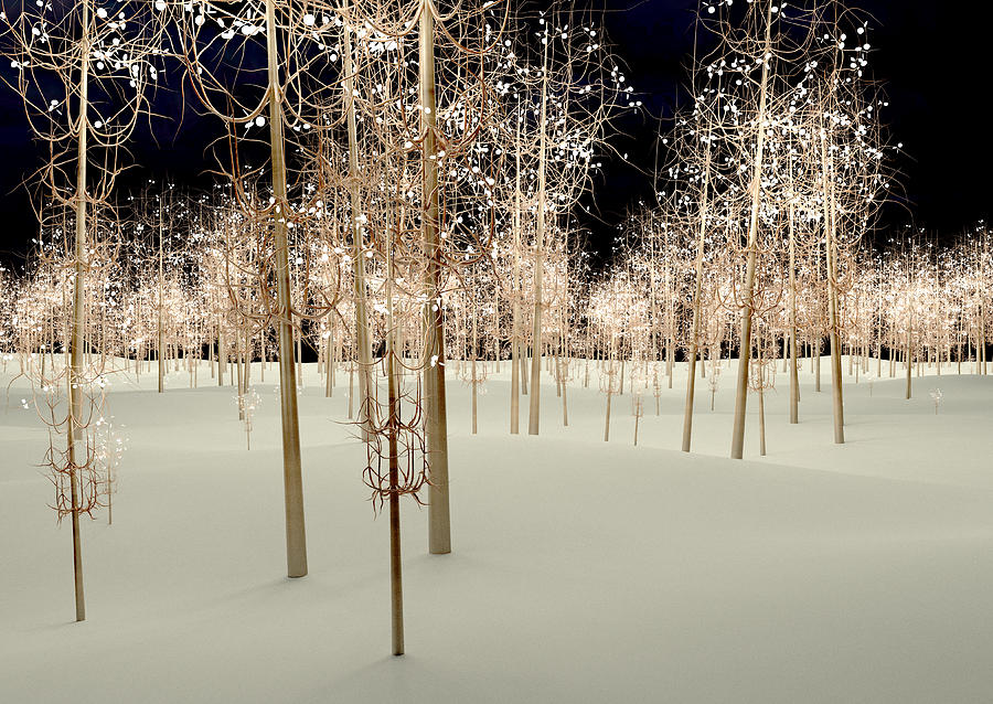 Lights Digital Art - Lights by Paul McManus