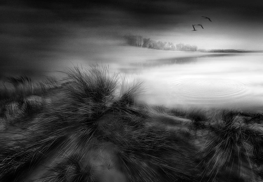 Beach Photograph - Like A Dream by Fran Osuna