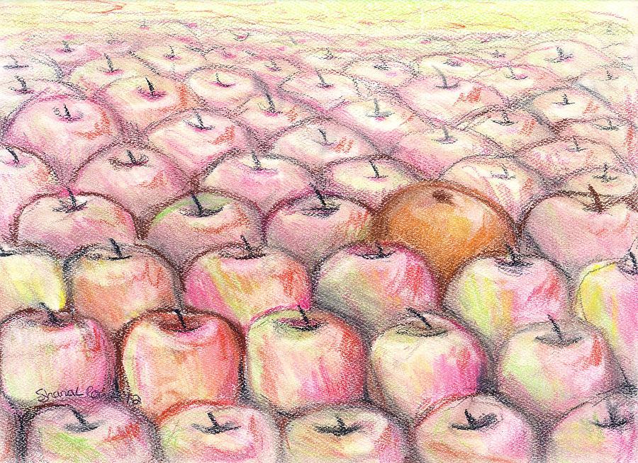 Fruit Drawing - Like Apples And Oranges by Shana Rowe Jackson