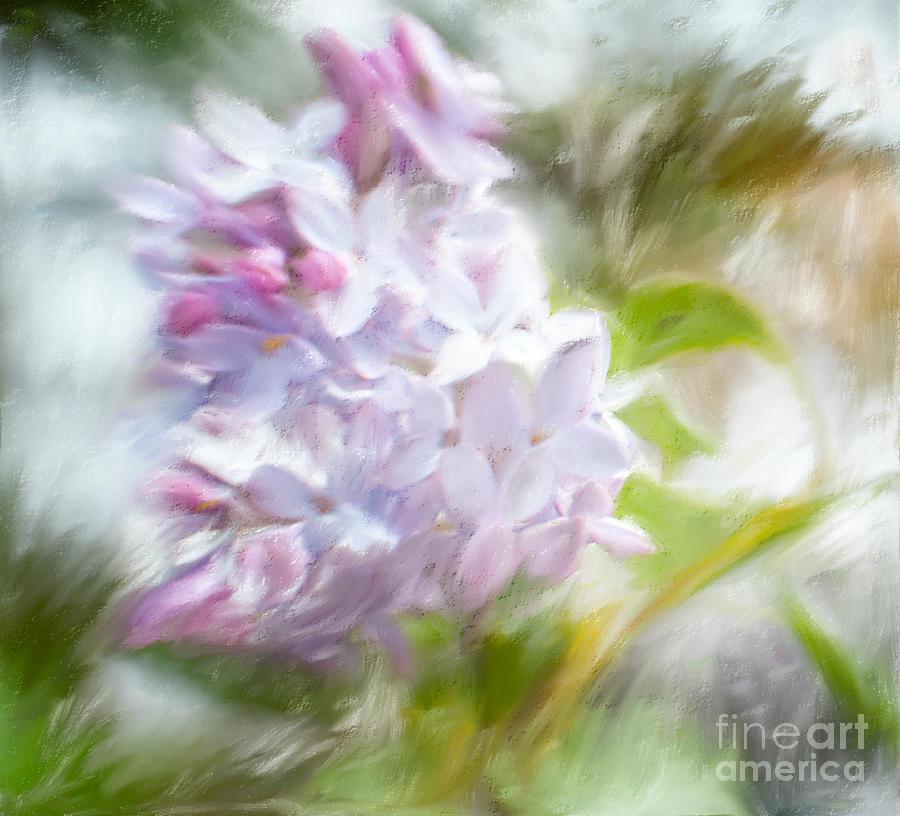 Lilac Impressions by Terri Creasy