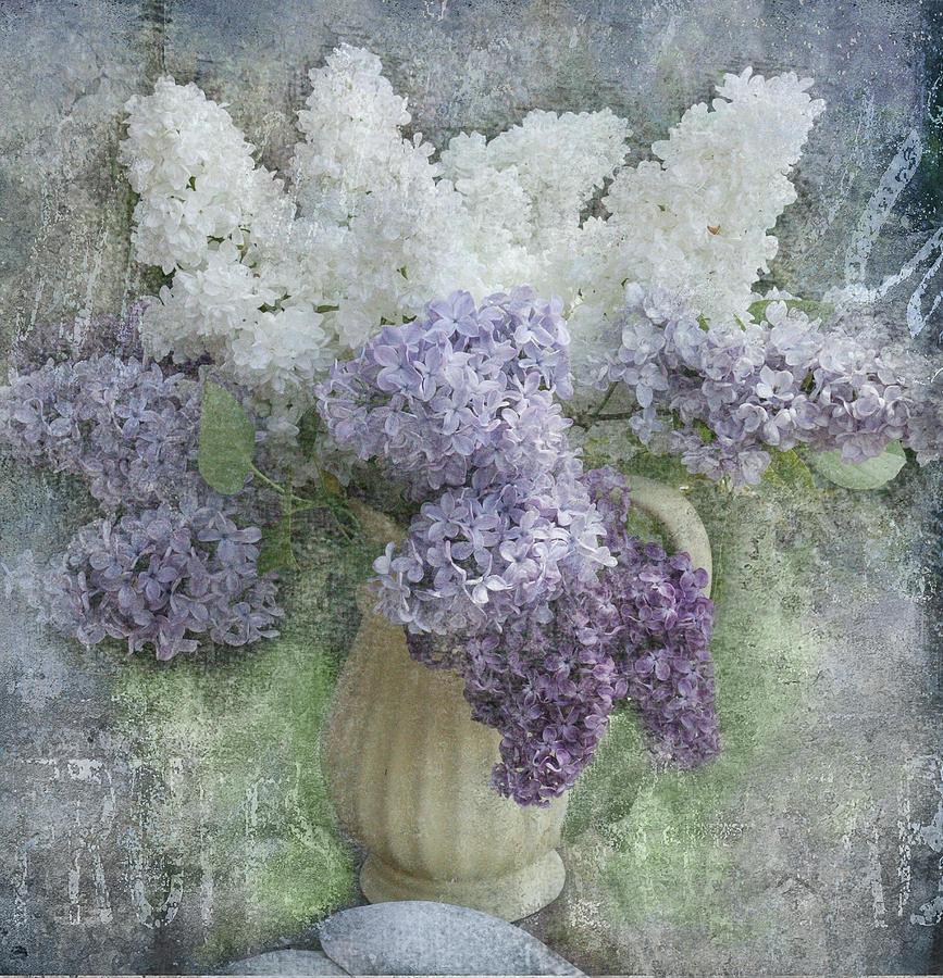 Lilacs Photograph - Lilac by Jeff Burgess