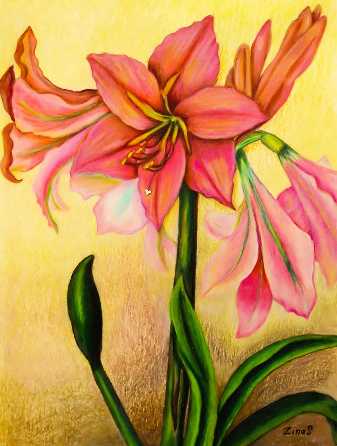Amaryllis Drawing - Lilies by Zina Stromberg