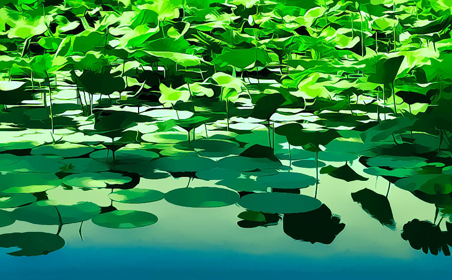 Lilly Pads Photograph - Lilly Pads Of Reelfoot Lake by Bonnie Willis