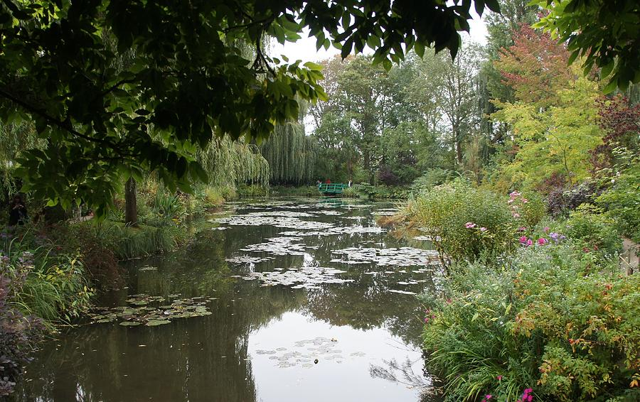 Monet Photograph - Lilly Pond II by Kristine Bogdanovich