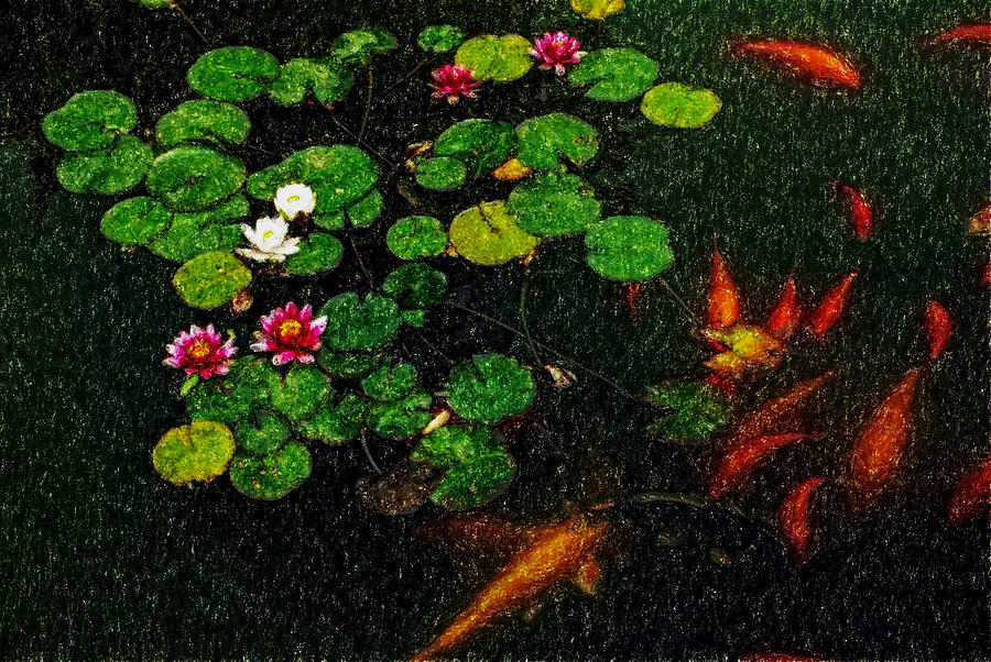 Asia Digital Art - Lily 0147 - Pastel Pencil 1 Sl by David Lange