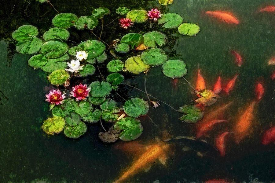 Asia Digital Art - Lily 0147 - Watercolor 1 Sl by David Lange