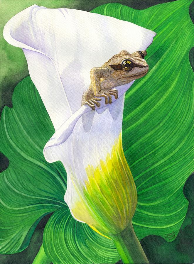 Frog Painting - Lily Dipping by Catherine G McElroy