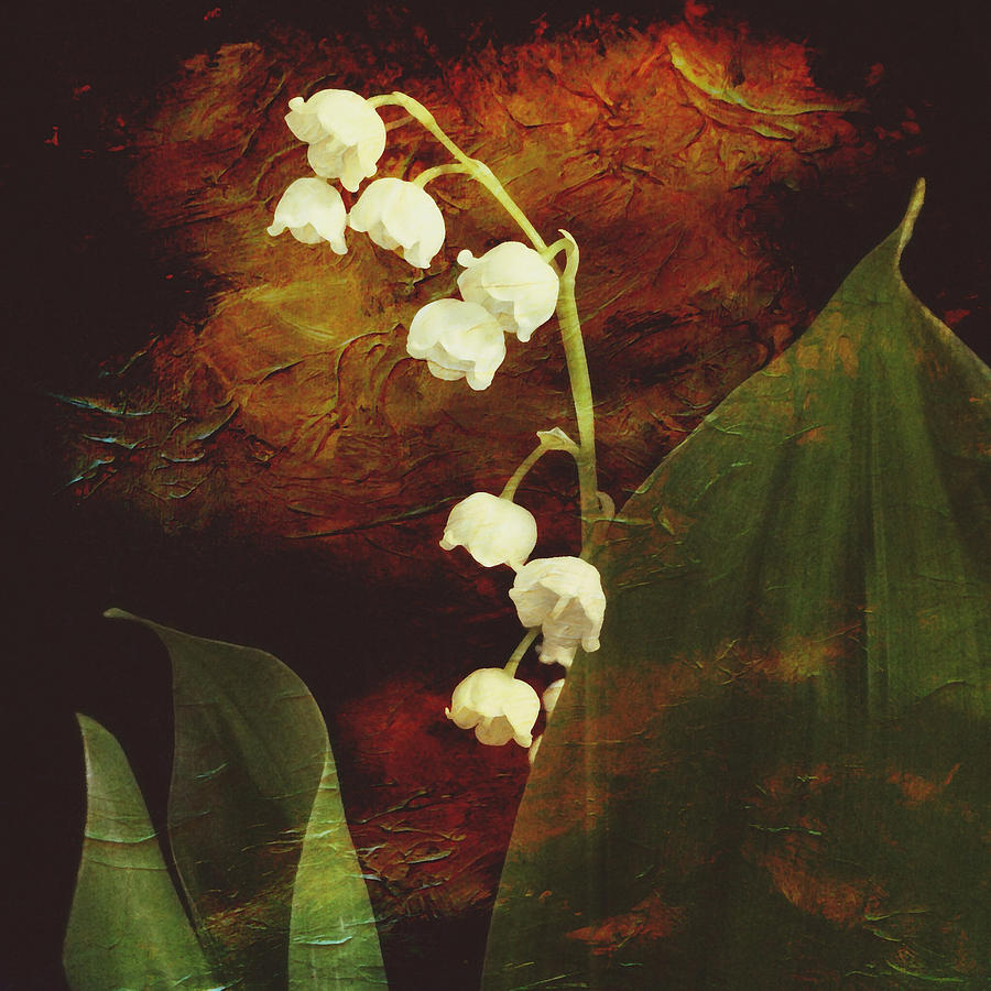 Lily Of The Valley Mixed Media