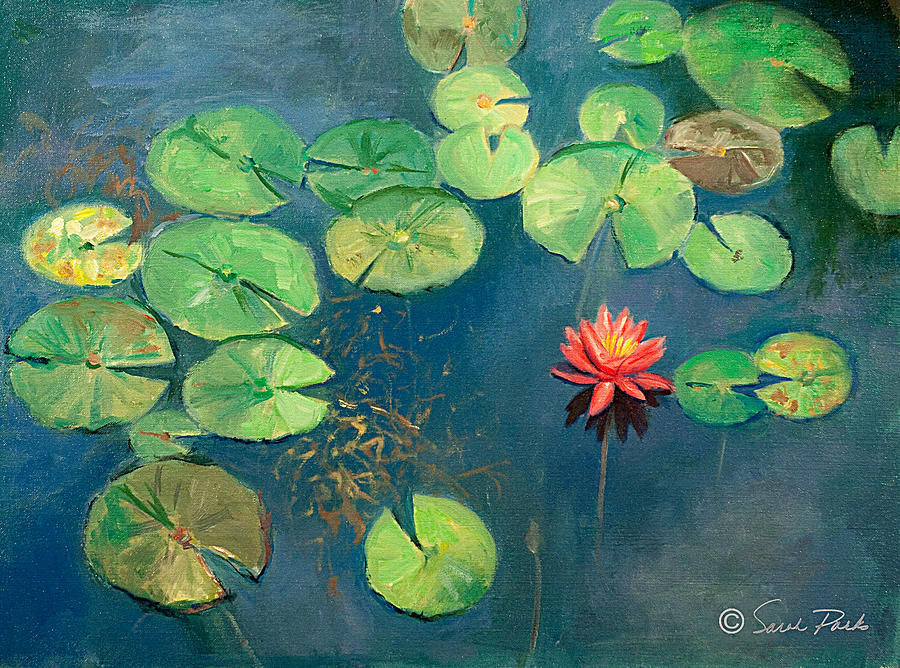 Lily Pond with Pink Flower by Sarah Parks