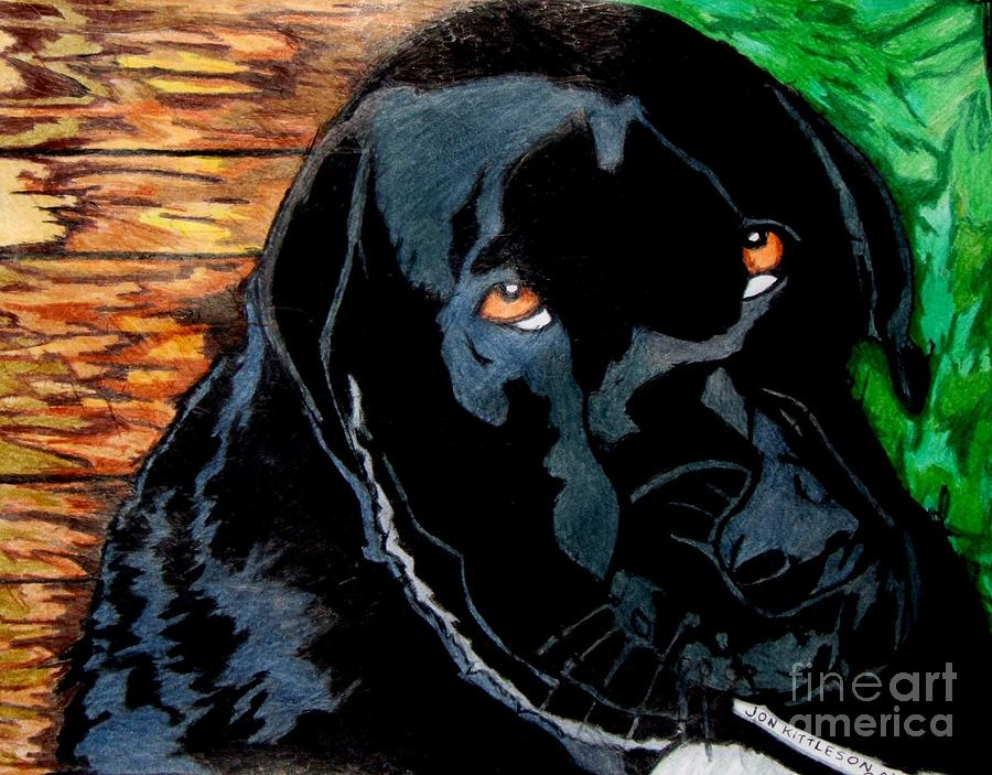 Lily the dog Drawing by Jon Kittleson