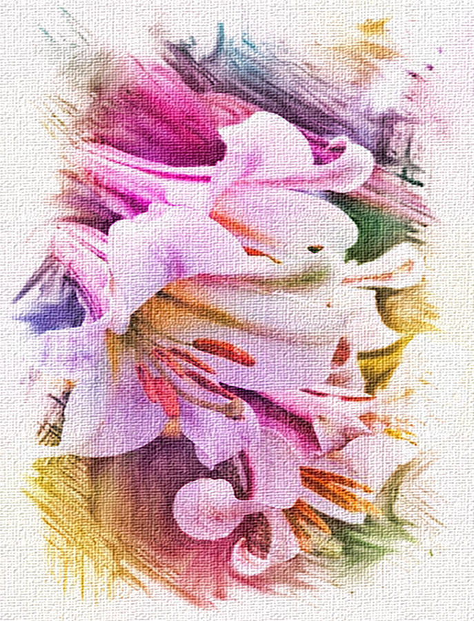 Lilies Mixed Media - Lily Ventures by Dennis Buckman