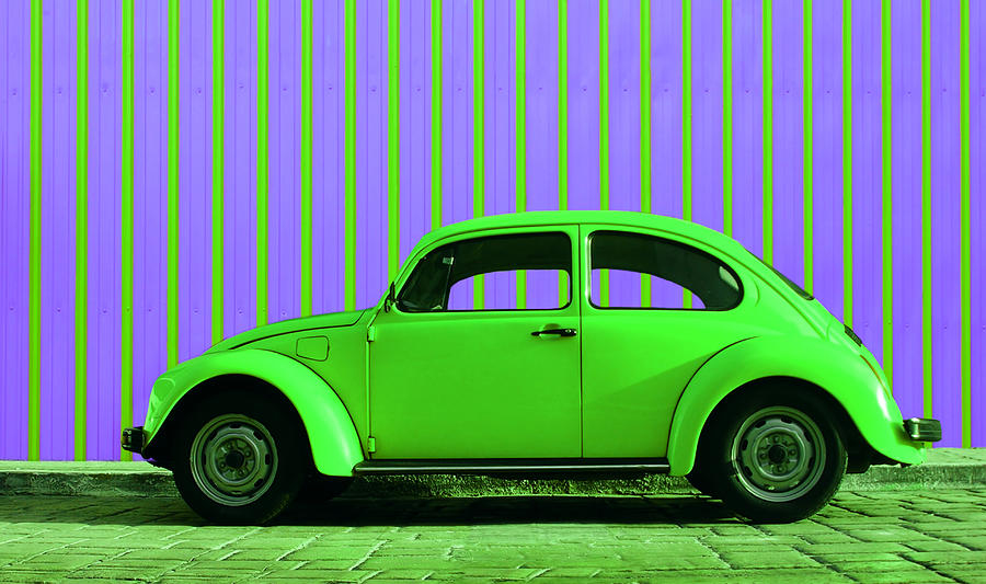 Lime Green Bug Photograph by Laura Fasulo