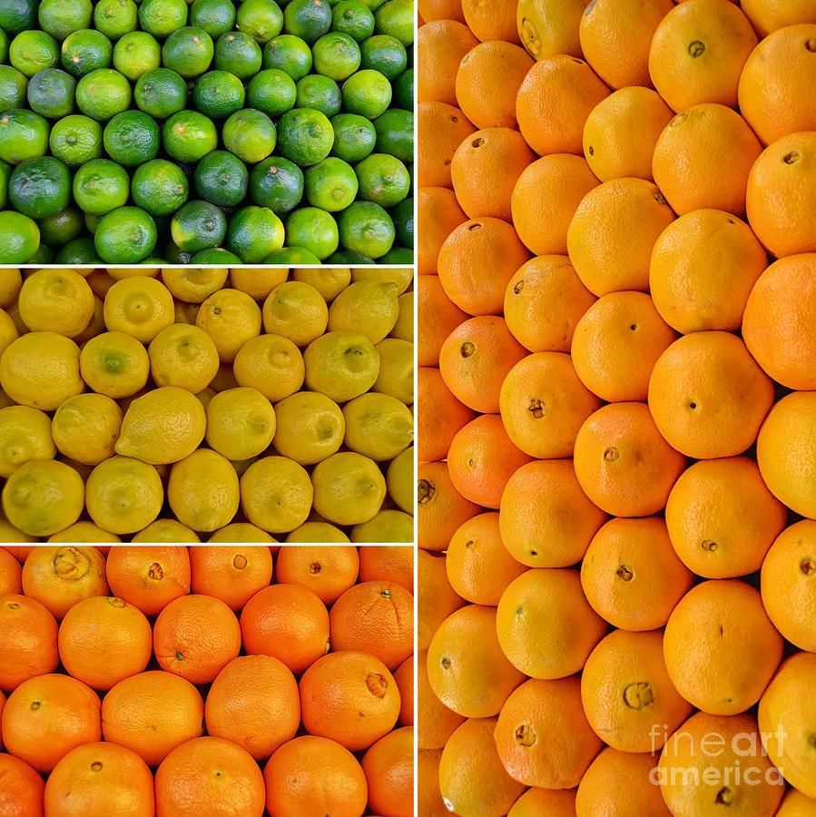 Limes Photograph - Limes Lemons Oranges by Sabine Jacobs