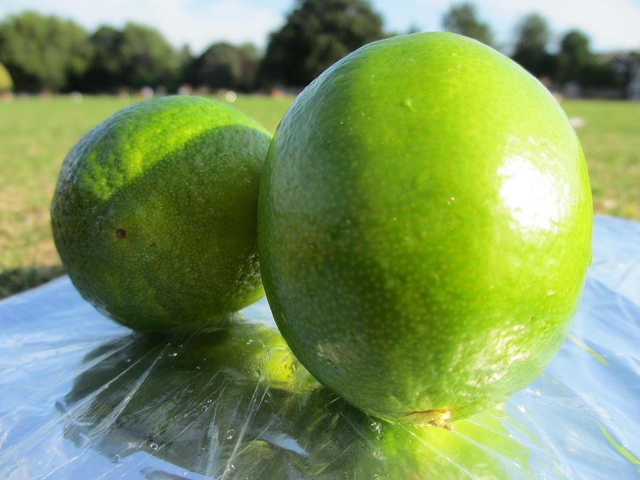 Lime Photograph - Limesize by Steven Hart