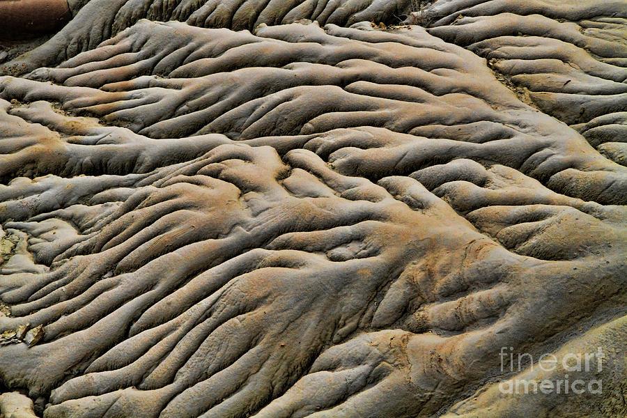 Limestone Formation by Edward R Wisell