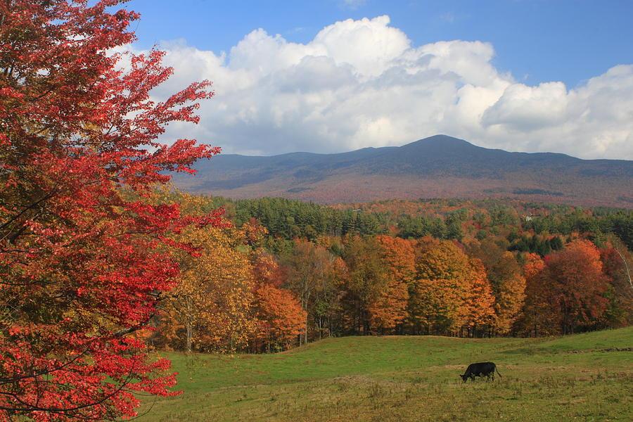 Canvas Lincoln Tech >> Lincoln Vermont Autumn Scene Photograph by John Burk