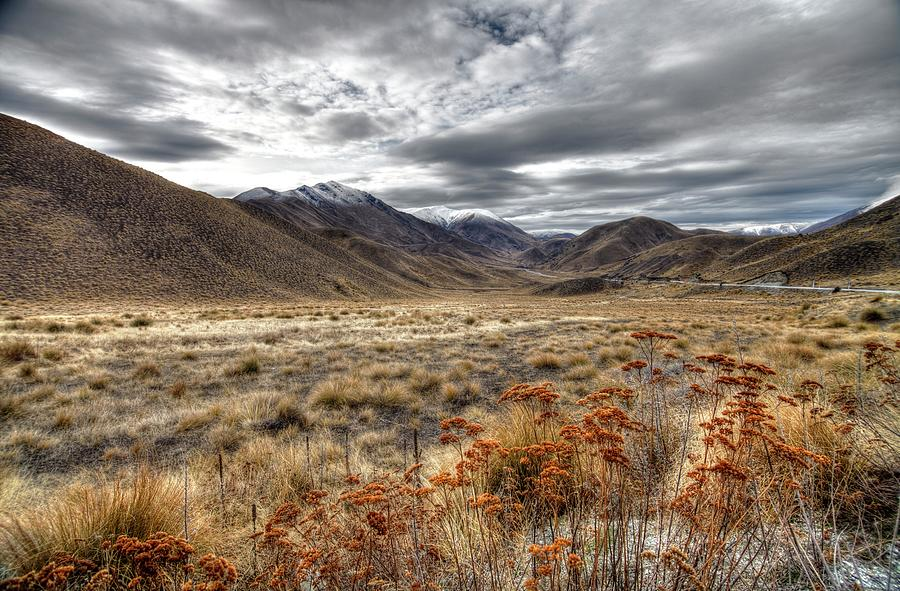 Lindis Pass, New Zealand Photograph by Images By Ni-ree