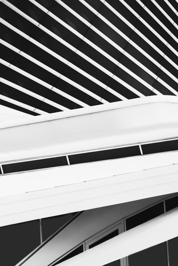 Line Photograph - Line Form by Jack Zulli