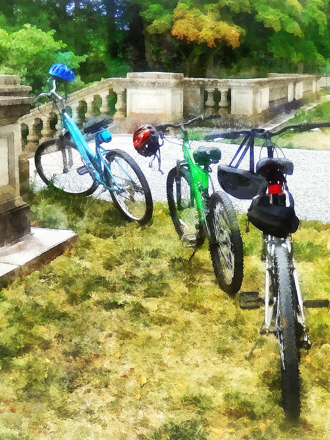 Bicycle Photograph - Line Of Bicycles In Park by Susan Savad