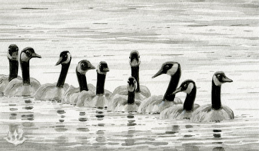 Line of Geese by Harry Moulton