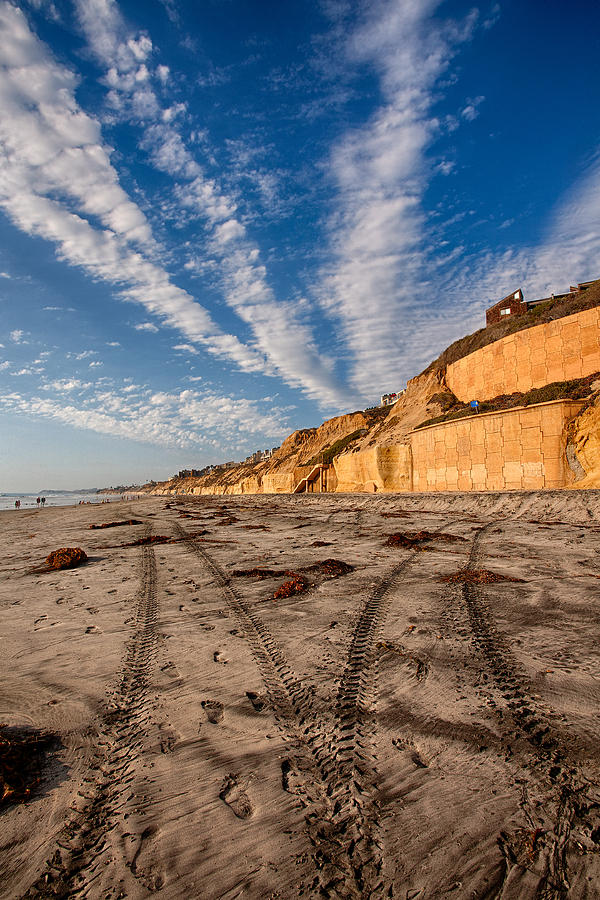 Beach Photograph - Lines Lines And Lines by Peter Tellone