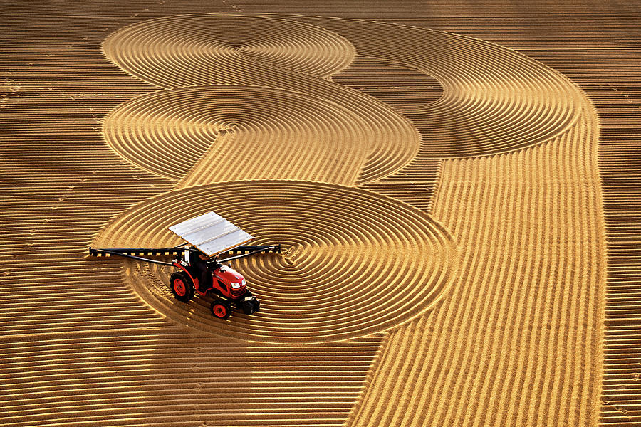 Tractor Photograph - Lines by Nese Ari