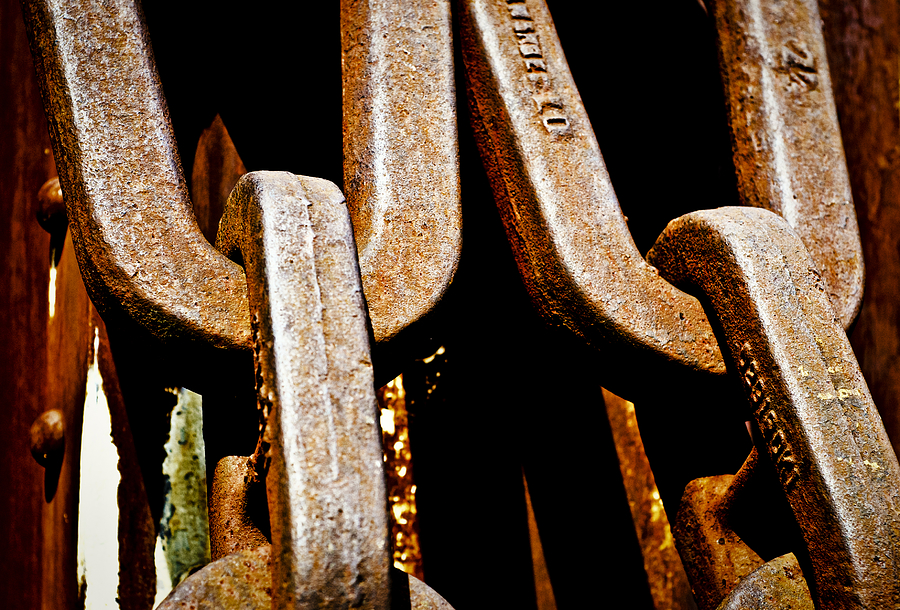 Linked Up Photograph - Linked Up by Christi Kraft