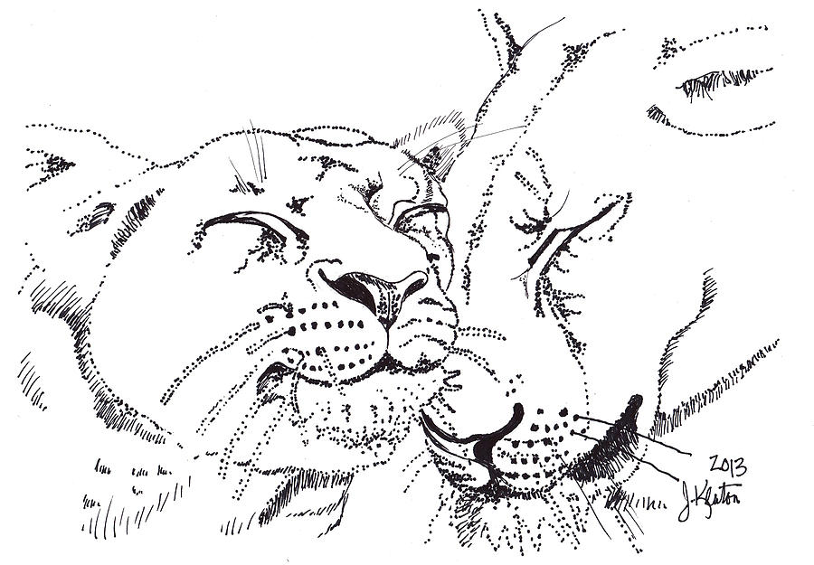 Lion Drawing - Lion And Cub by John Keaton