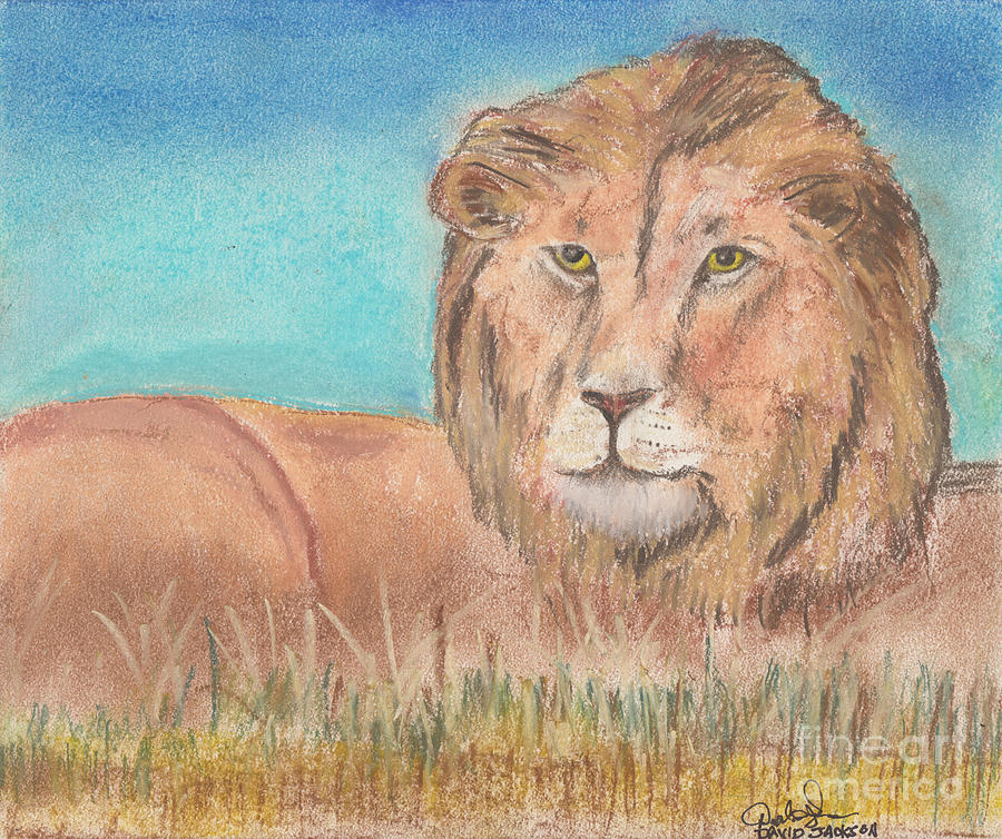 Lion Pastel - Lion by David Jackson