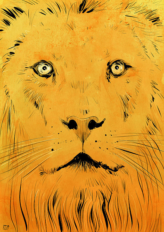 Animals Drawing - Lion by Giuseppe Cristiano