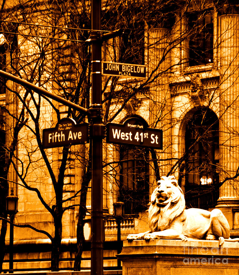 Lion Photograph - Lion On 5th Avenue by Dan Hilsenrath
