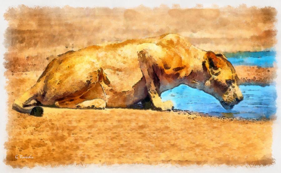 Rossidis Painting - Lioness Drinking by George Rossidis