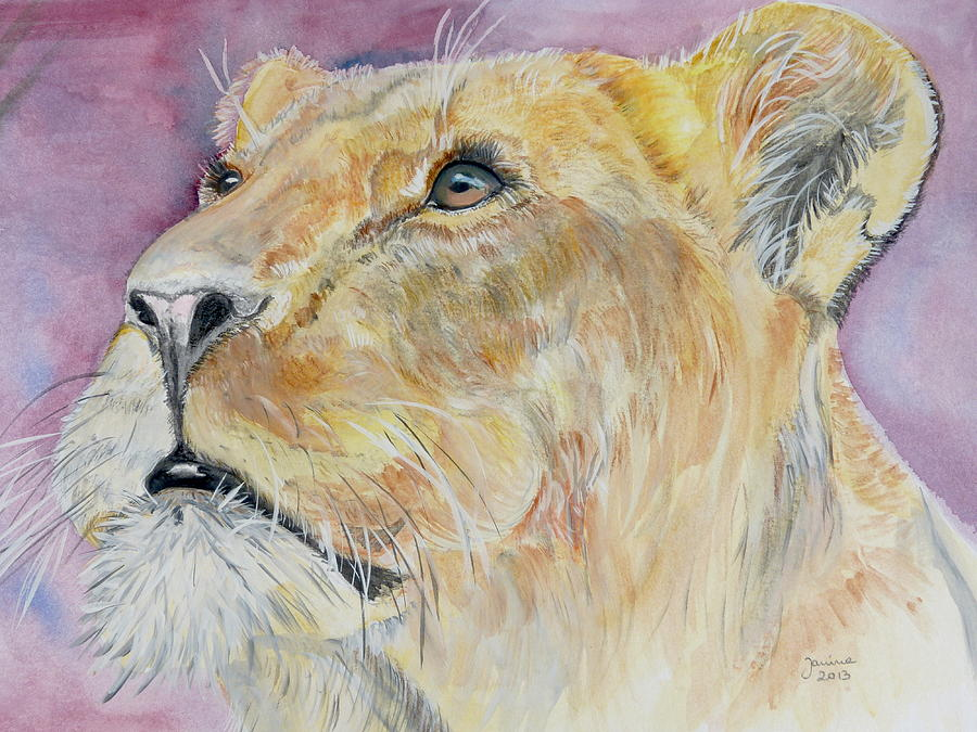 Animals Painting - Lioness by Janina  Suuronen