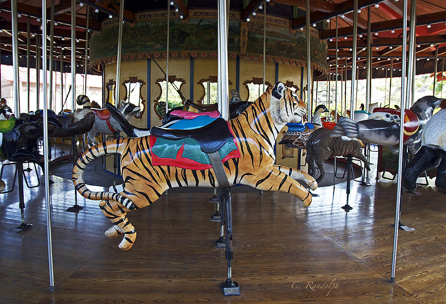 Carousel Photograph - Lions And Tigers And Bears by Cheri Randolph