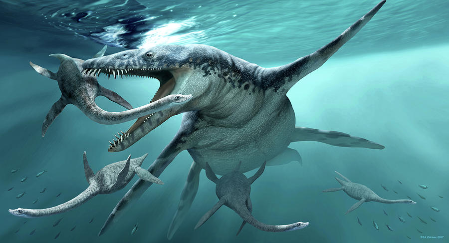Liopleurodon Extinct Marine Reptile Photograph by Jaime ...