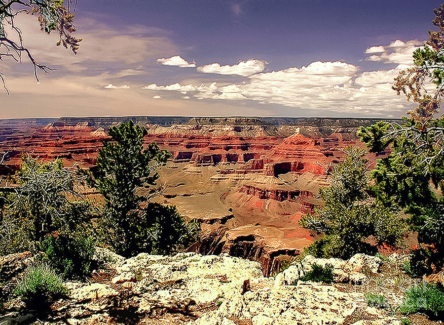 Grand Canyon Photograph - Lipan Point  Grand Canyon by Bob and Nadine Johnston