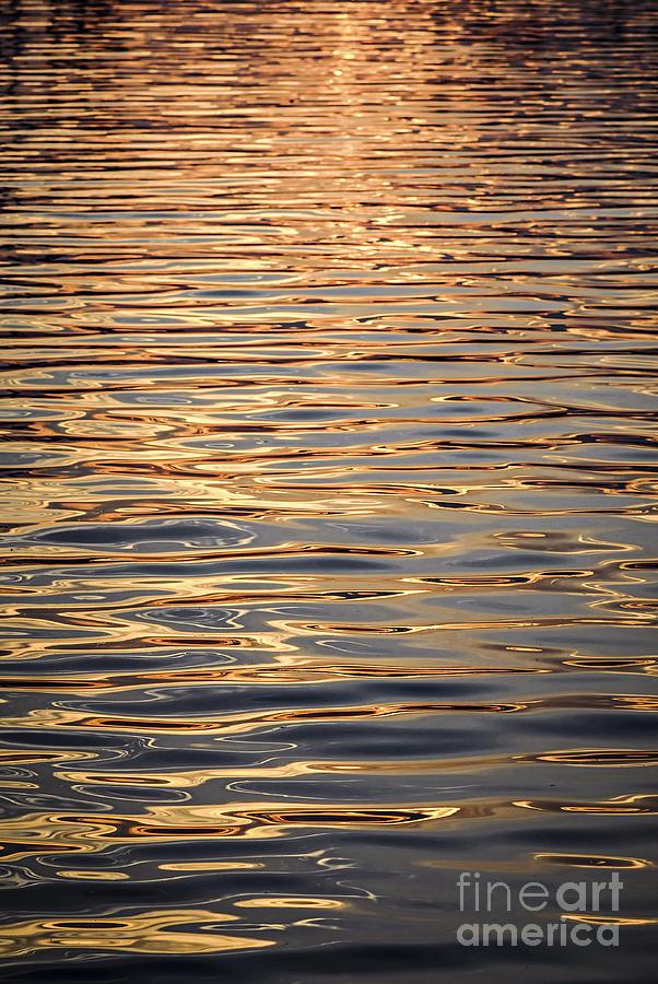Water Photograph - Liquid Gold by Elena Elisseeva