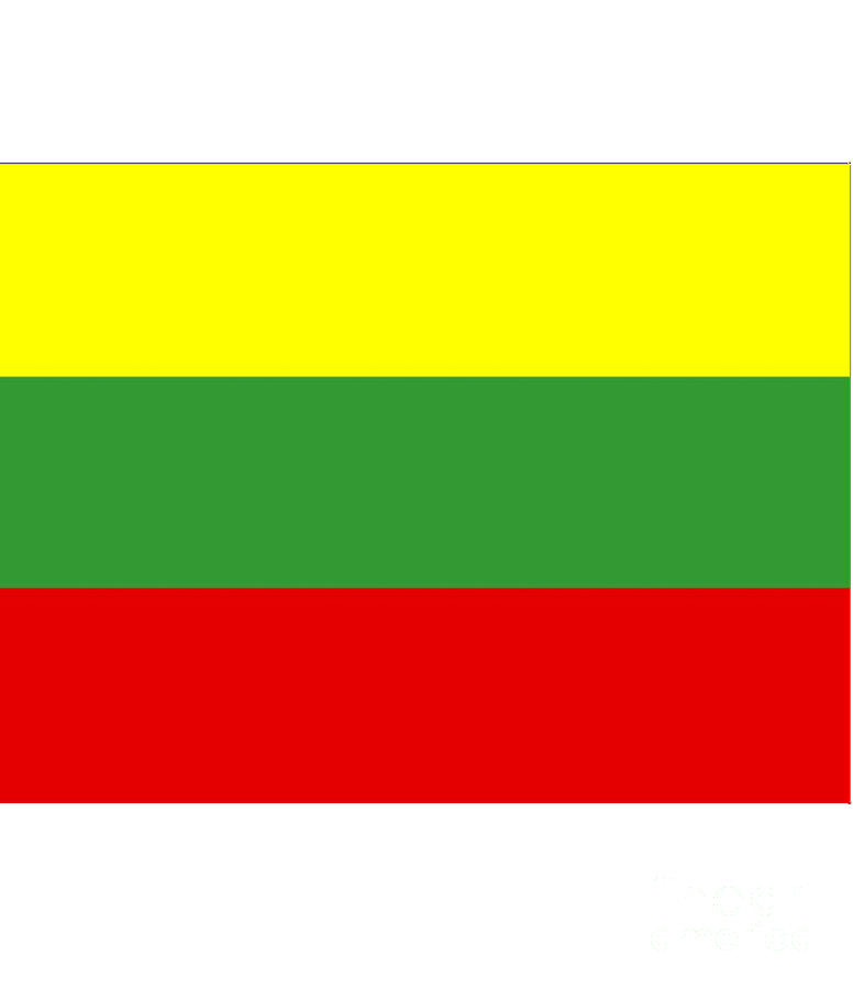 Lithuania Digital Art - Lithuania Flag by Frederick Holiday
