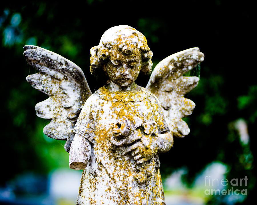 Cemetery  - Little Angel by Sonja Quintero