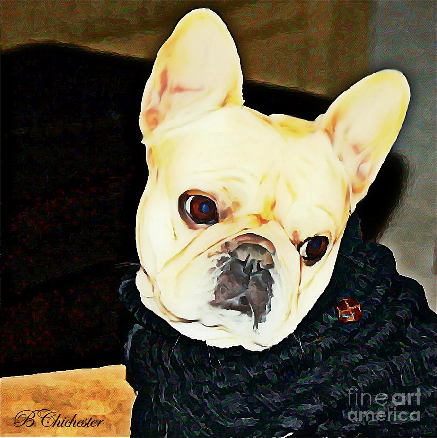 French Painting - Little Black Sweater by Barbara Chichester