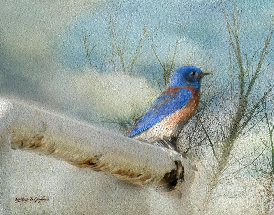 Birds Digital Art - Little Blue Bird by Rhonda Strickland