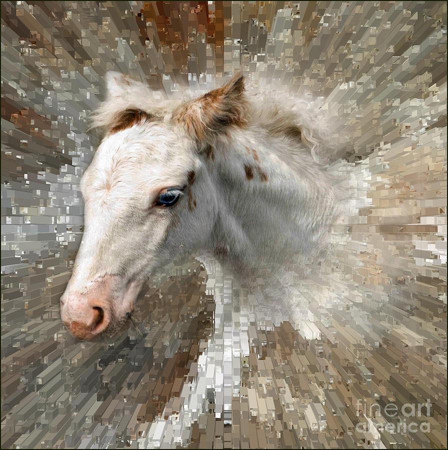 Horse Photograph - Little Blue Eye by Liz  Alderdice