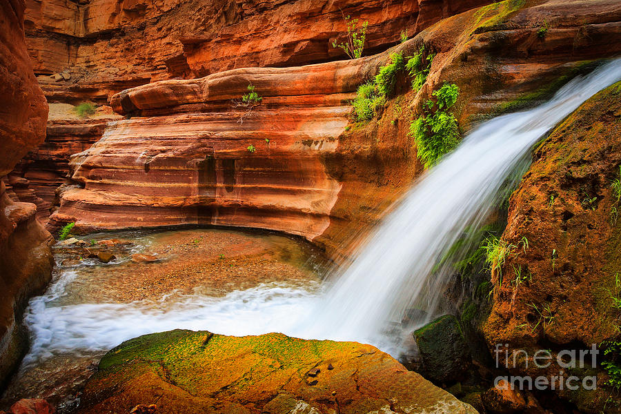 America Photograph - Little Deer Creek Fall by Inge Johnsson