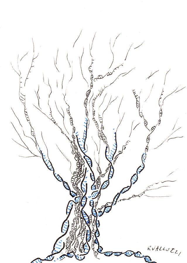 Ink Painting - Little Dna Tree by Regina Valluzzi