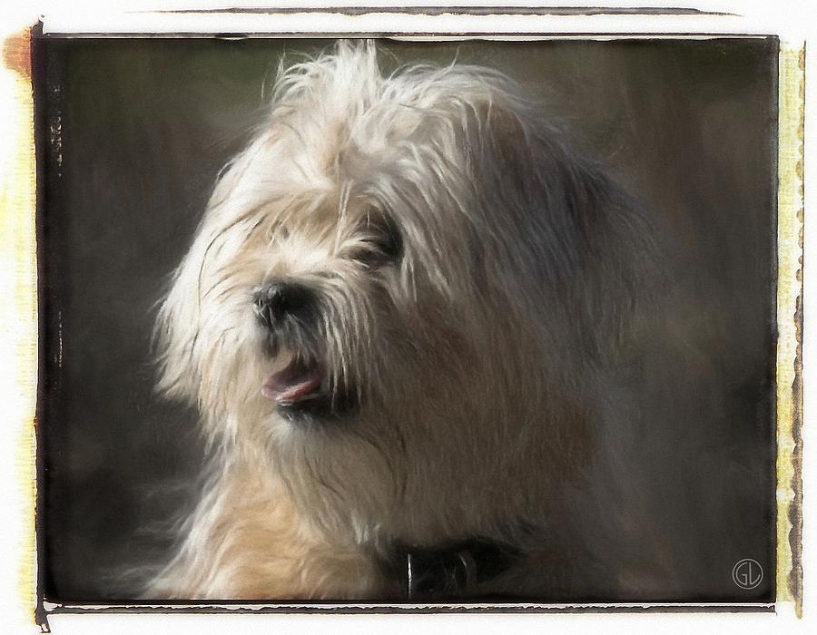 Animal Digital Art - Little Doggie by Gun Legler