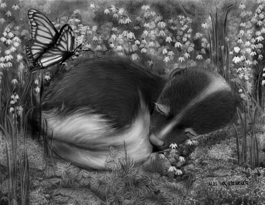 Skunk Drawing - Little Dreamer by Miki Krenelka