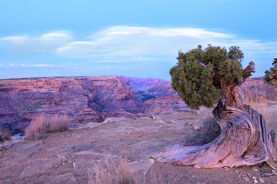 Central Utah Photograph - Little Grand Canyon by Darryl Wilkinson
