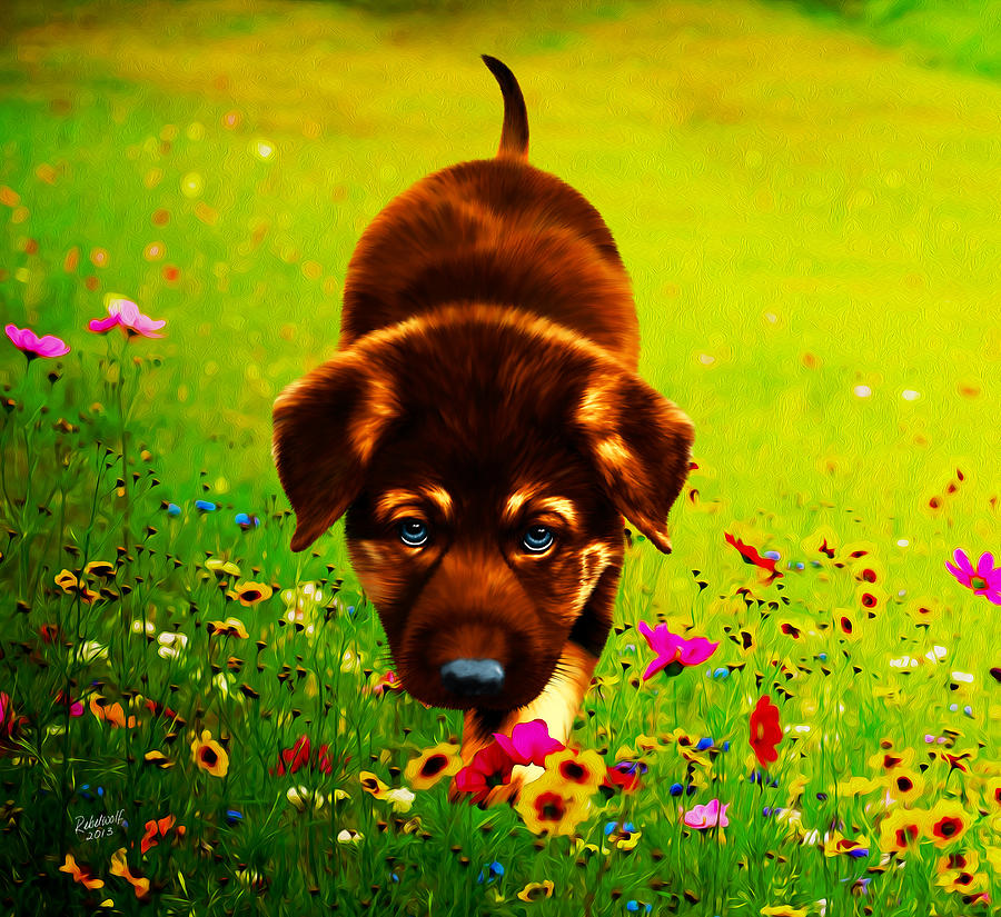 Dog Digital Art - Little Hunter by Rebelwolf