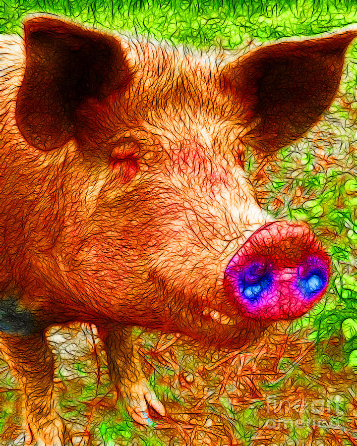 Animal Photograph - Little Miss Piggy - 2013-0108 by Wingsdomain Art and Photography