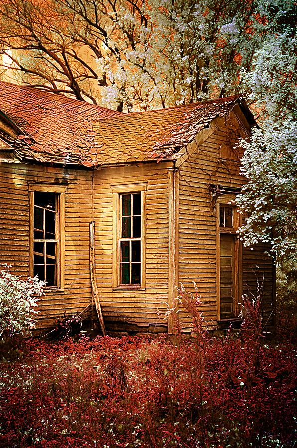 Old School House Photograph - Little Old School House II by Julie Dant